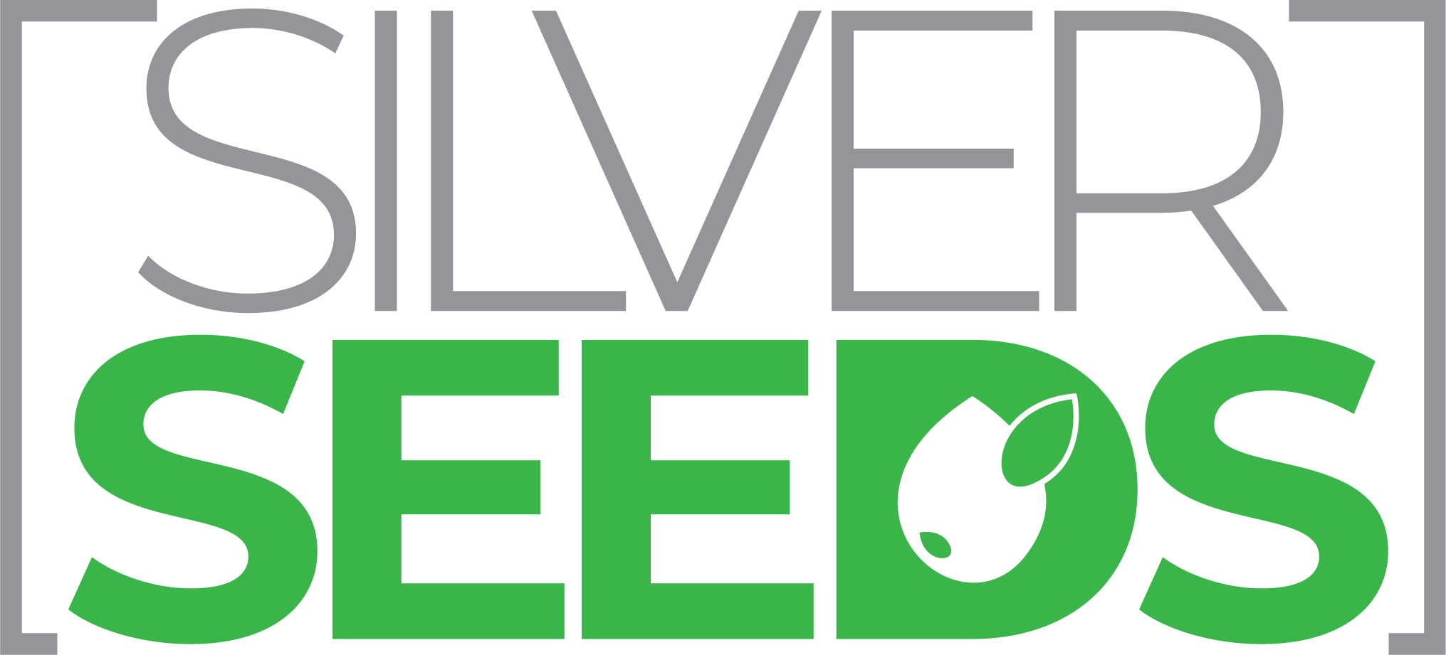 Silverseeds Enterprise